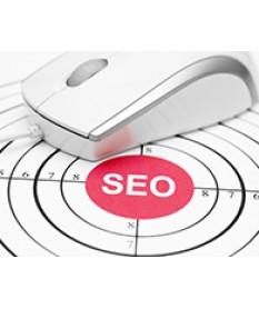 Thiết kế website seo top google